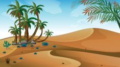 desert with palm trees