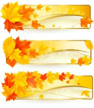 Three autumn banners with colorful leaves in golden frames. Vect