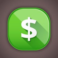 Vector Dollar Icon
