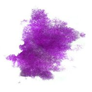 ink purple watercolor paint splatter splash grunge background bl