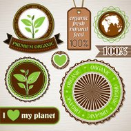 Set of organic, ecology vector labels