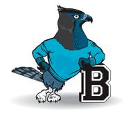 Blue Bird With The Letter B
