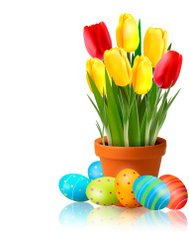 Crocus and Easter Eggs