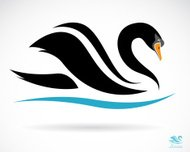 Vector image of a swan