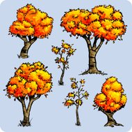 Awesome Autumn Trees