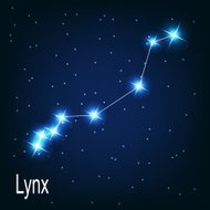 constellation 'Lynx' star in the night sky. Vector illustrat