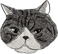 illustration of face cat