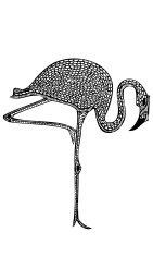 Isolated Vector Illustration of Patterned Flamingo Bird