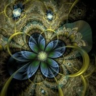 Colorful light fractal flower or butterfly, digital artwork