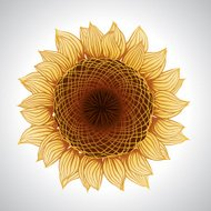 Vector illustration of sunflower. Flower element for design.