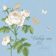 Vintage vector card with blossoming white rose