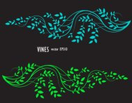 decorative element of silhouette vines