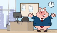 Businessman Pig in Office