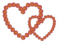 Orange and Yellow Prickly Flower Heart Frames On White