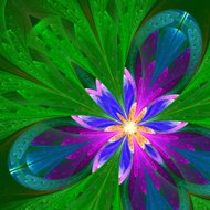 Multicolor beautiful fractal flower in green, purple and blue.