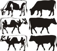 cow and bull silhouettes