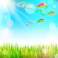 Summer landscape with grass and colorful kites the sky