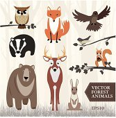 Set of vector forest animals