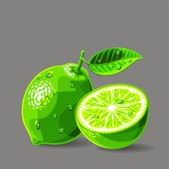 Vector fresh limes with water drops. Vector illustration.