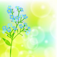 Card with forget me not flower on sun light