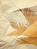 Palm leaf on paper texture background