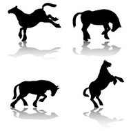 Workhorse Silhouette Collection