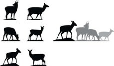 Deer Silhouettes (Vector drawing)