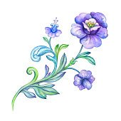 decorative flower element design element, watercolor drawing isolated on white