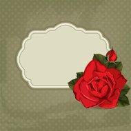 Invitation card with rose and frame  - Illustration