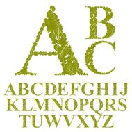 Font made with leaves, floral alphabet letters set