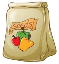 Pack of bell pepper seeds