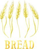 Ears of wheat and the word BREAD painted with watercolor