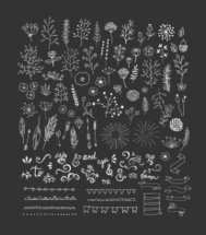 Hand Drawn vintage floral and decor elements. Vector. Isolated.