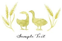 Silhouettes of two green geese framed by ears of wheat