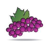 Freehand drawing grape icon