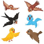 Birds Vector Illustration Set