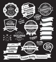 Set of vintage badges and label design elements