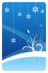 Blue winter snowflake floral design