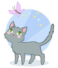 Cute cartoon gray cat on blue background with butterfly