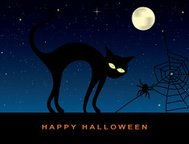 Halloween Cat and Spider