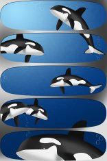 orcas banners