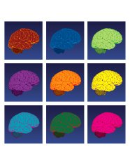 Vector Colorful Brains