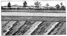 Antique illustration of soil layers section
