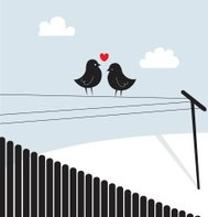 Love birds - series