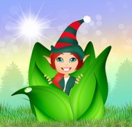 elf in the bud
