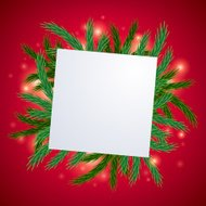 Fir tree branch with white card background.