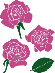 Three Roses with Rose Leaf