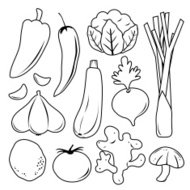 Vegetable Set Black Icon Collection Vector