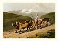 Costumes of Yorkshire - East Riding or Wolds Waggon