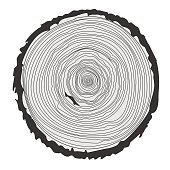 Tree rings and saw cut tree trunk. Vector illustration
